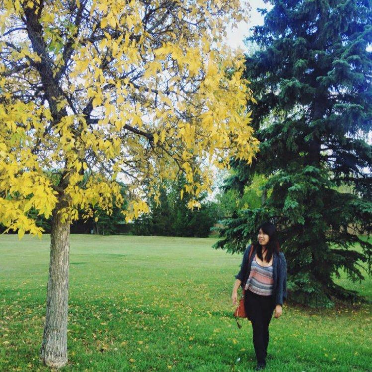 fall2-a